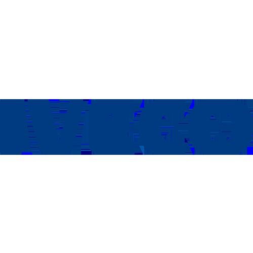 Iveco LCV